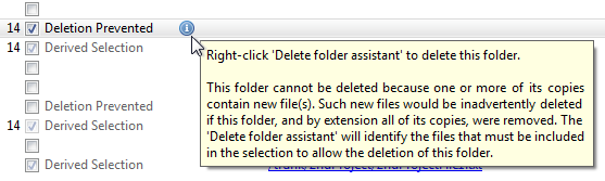delete-info-warning-tooltip